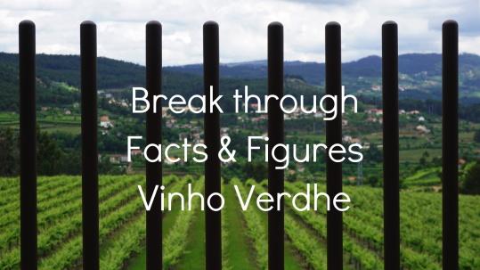 more_information_vinho_verdhe_cover