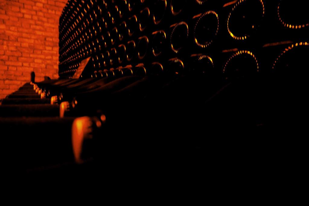 goset-cellar-epernay