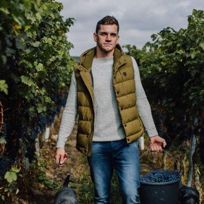winery-balzhaeuser-rhine-hesse-germany-cover